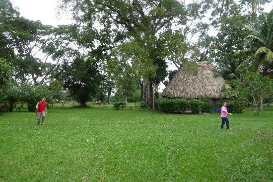 Banana Bank Lodge & Jungle Horseback Adventure : The kid's cabana