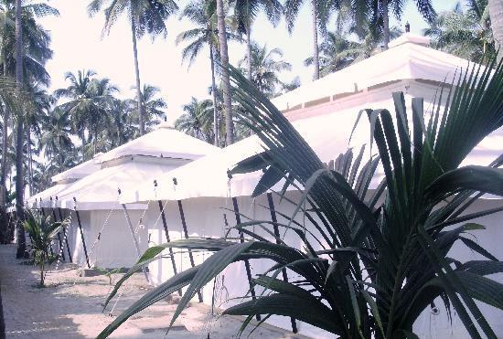 Mandrem, India: Mohul Tents