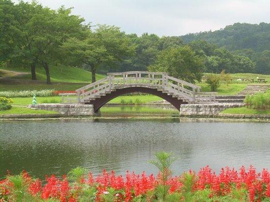 Michinoku Lakeside National Government Park : Bridge in garden at Michinoku Government Park