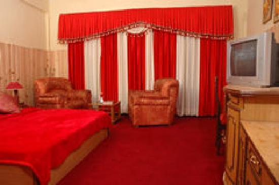 Dharampur, India: Dlx Room