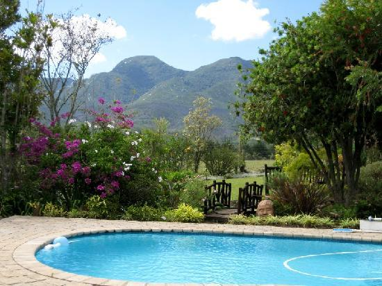 Malvern Manor Country Guest House: Heated swimming pool