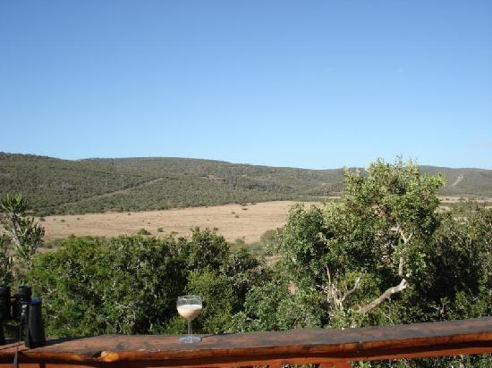 Addo Afrique Estate: Views from lodge, Addo Afrique