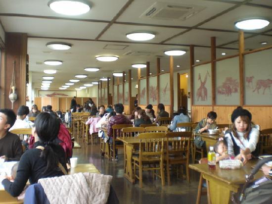 Safari Restaurant : 広い店内