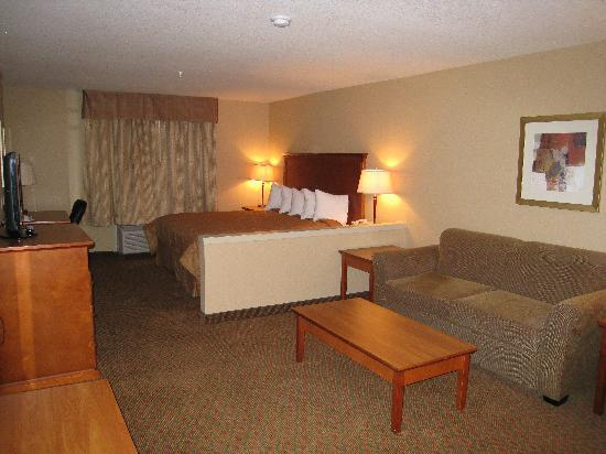Executive Hotel Alexandra at Edmonton Airport : The Room