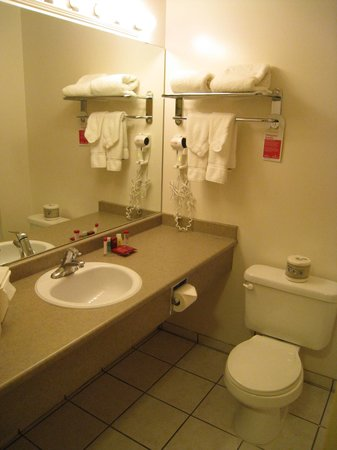 Ramada Edmonton International Airport: The Bathroom