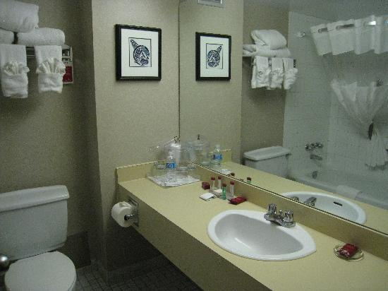 Ramada Plaza Prince George : The Bathroom