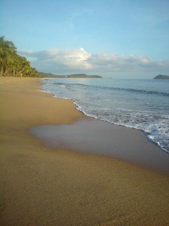 Argosy on the Beach: The Beach