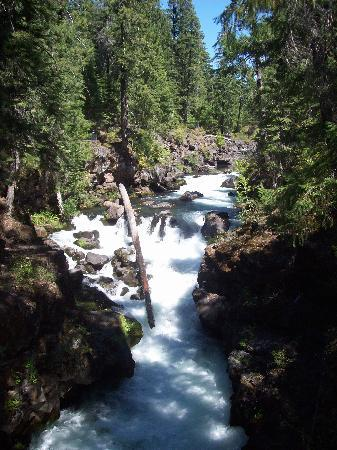 Prospect, OR: Down the road at the Natural Bridge- a must see.