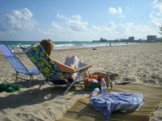 Ocean Park Beach: Excellent