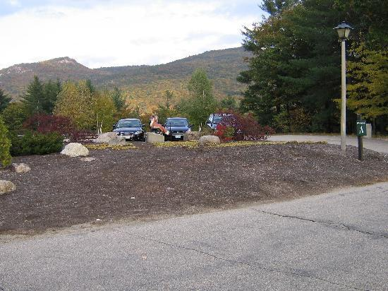 Fox Ridge Resort: View on Parking Lot Side