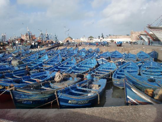 Riad Malaika: Le port d'Essaouira