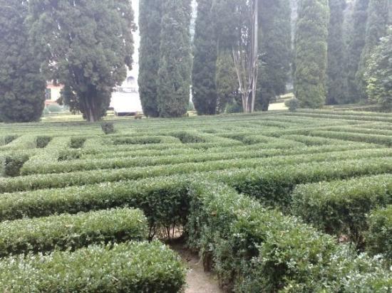 Giardino giusti il labirinto photo de v rone province for Giardino labirinto