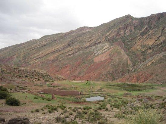 Tarapaya