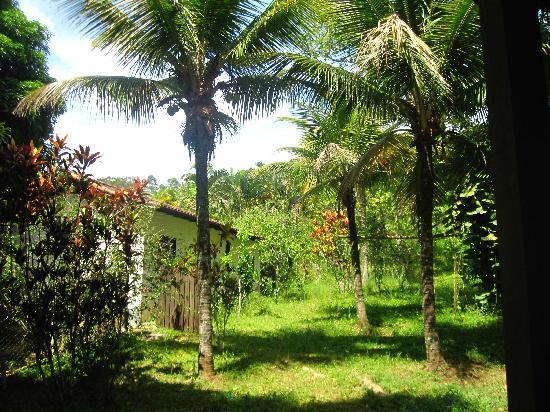 Hotel Fazenda Sitio Nosso Paraiso: Farm