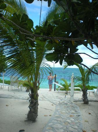 Atlantic Ocean Beach Villas : Beach view from villa