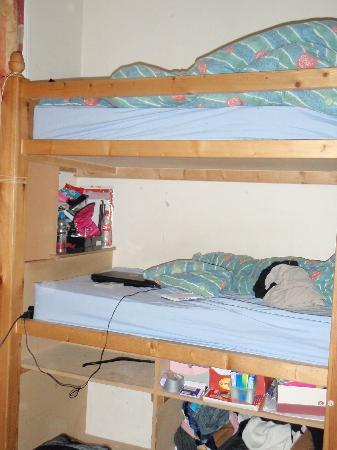 Barmy Badger Backpackers : bunk beds