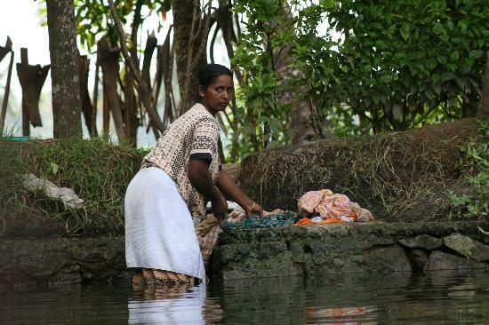 อินเดีย: Daily Chores - Backwaters of Kerala