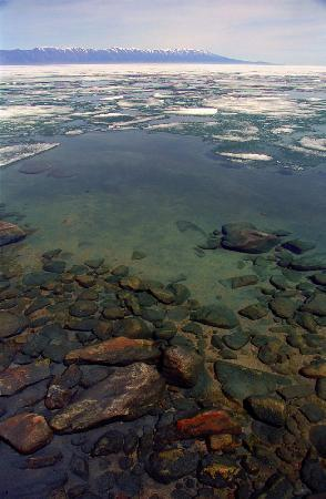 Lake Baikal, Russia: Printamps au lac Baikal, par BaikalNature