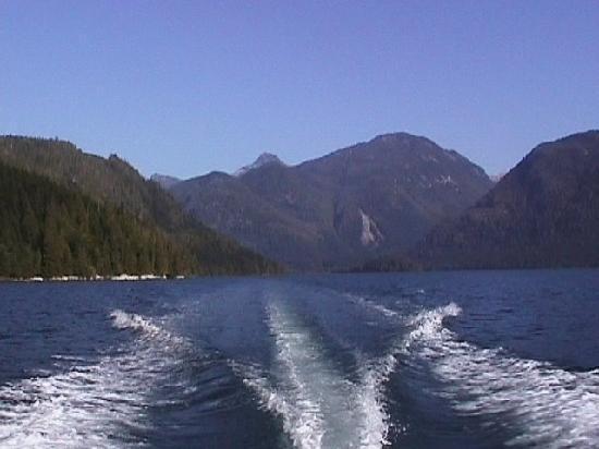 Grizzly Bear Lodge & Safari: Speeding Up Knight Inlet