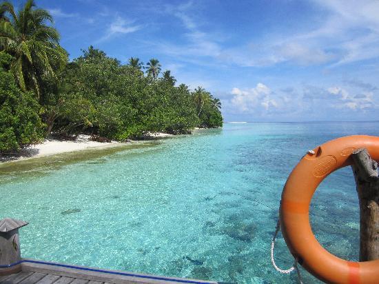 Vilamendhoo Island Resort & Spa: vue du poton