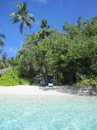 Vilamendhoo Island Resort & Spa: plage de la chambre 23