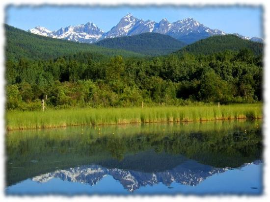 Teepee Meadows Guest Cottages: The Cariboo Mountains reflected in the pond below the cottages