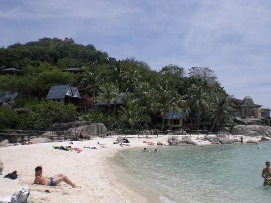 Porto picture of big fish dive resort koh tao tripadvisor - Ko tao dive resort ...