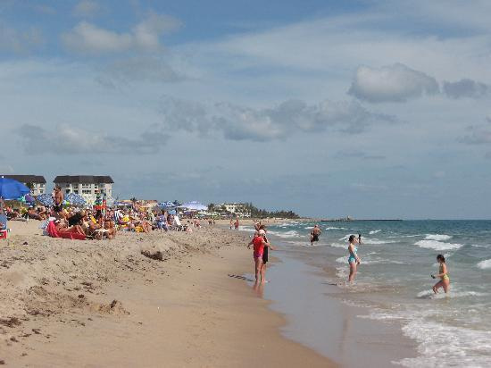 Boynton Beach (FL) United States  City new picture : Myers Beach, FL, United States Picture of Boynton Beach, Florida ...