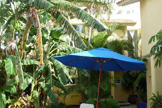 Villas Las Anclas: Villa Las Anclas patio - tropical welcoming area