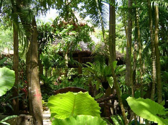 Somkiet Buri Resort: grün, grün, grün