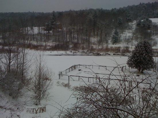 Auberge de Stowe : View from the dining room