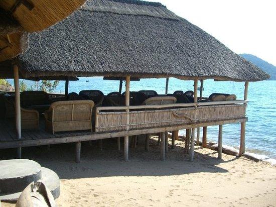 Cape Maclear, Malawi: Gecko lounge.