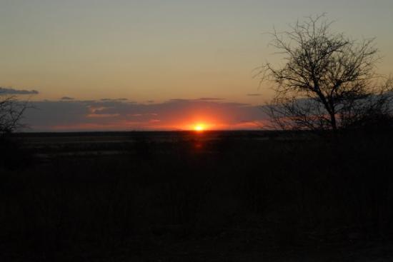 Central Kalahari Game Reserve, Botsuana Sunday Pan