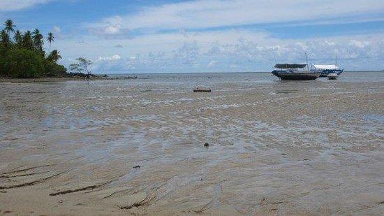 Ilha de Boipeba, BA : Y esto es ya desde la isla