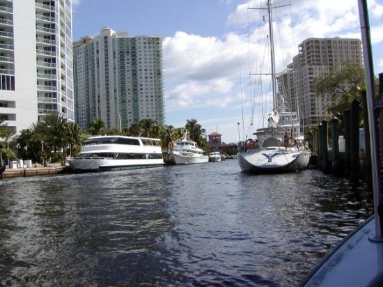 Water Taxi: Downtown Ft. Lauderdale via the river.