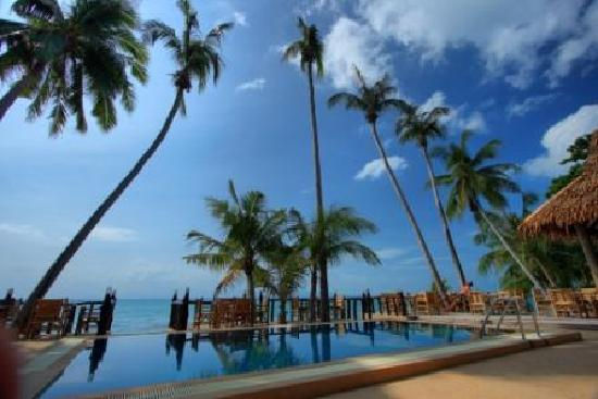 Phangan Cottages: The swimming pool area