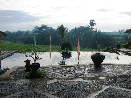 Bumi Ubud Resort: the pool