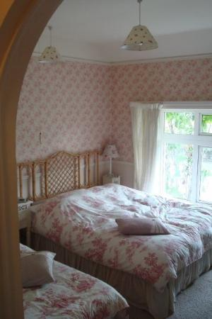 cozy dunromin b&b in kilkenny ... HIGHLY recommended (val is the best, so sweet and so helpful!)