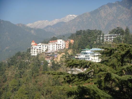 Pride Surya Mountain Resort: dharamshala