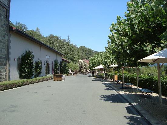 Beringer Vineyards: outside the tasting room