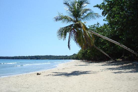 Bluspirit Cabinas: Cahuita Beach