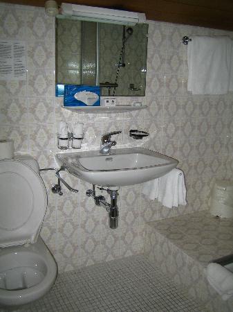 Swiss Budget Alpenhotel Täsch : Bathroom