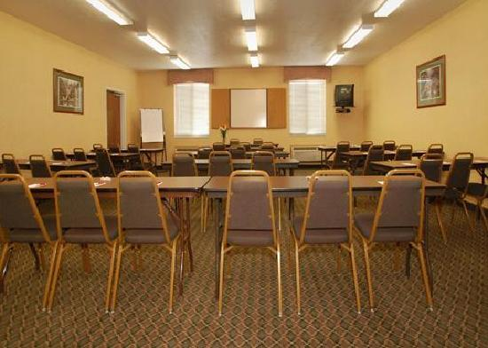Comfort Suites NE Indianapolis-Fishers : Meeting Facility