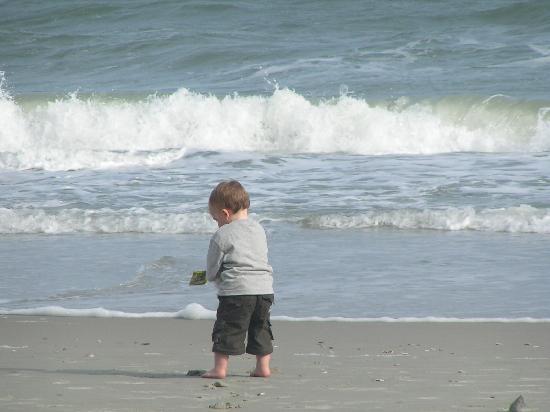 Grand Atlantic Ocean Resort: Luke loved the ocean