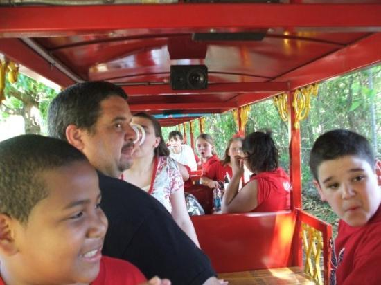 Montgomery Zoo: The train at the zoo.....