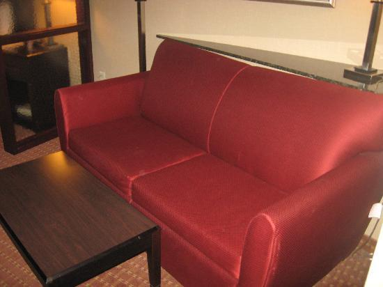 Comfort Suites Exton: Room wasn't cramped at all, even with the sofa in it.