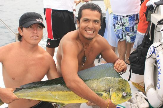 Geronimo Cruise: Whale Watching/Kayak/Beach Trip: Mahi Mahi!