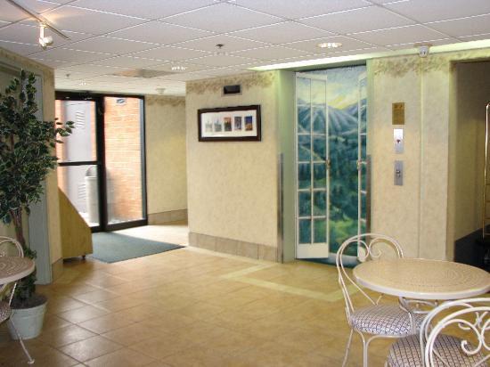 Comfort Inn Virginia Horse Center: The breakfast room was tastefully decorated