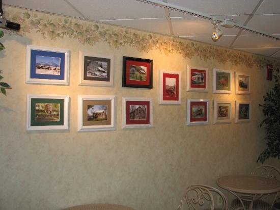 Comfort Inn Virginia Horse Center: Pictures of Viirginia Landscape
