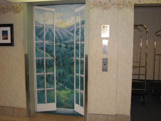 Comfort Inn Virginia Horse Center: The mural is the elevator..